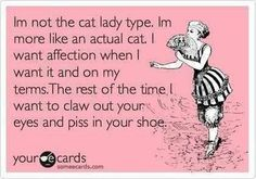 I'M NOT THE CAT LADY TYPE...I'M MORE LIKE AN..