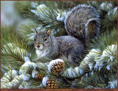 Grey Squirrel by Rosemary Millete - Wildlife artist