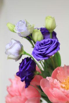 kindflowerbyKiccororin - via: zsazsabellagio - Imgend