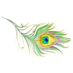 peacock-this would make a cool tat.