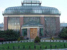 Lubiechowska Palmhouse