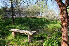 Přírodní zahrada - Libická Lhotka