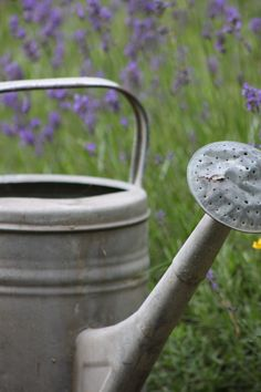 Vintage watering can ❤️