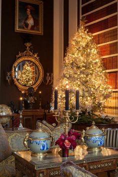 Weihnachtsdeko Ideen Mit Der Farbe Gold Weihnachtsstern Tannenbaum Kabinett