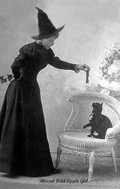 An antique photo postcard of a witch and her cat