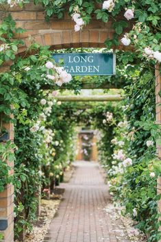 In David Austin's Shropshire gardens, archways shouldering roses, canals sprinkled with petals, and a café with blooms adorning its foundation beautify the acreage where pollen is transferred from one promising parent to another.