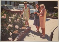 "Robert Bechtle - ""Roses"" oil on canvas, 1973"