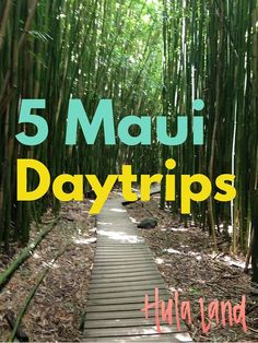 5 Things to do on Maui including the Road to Hana, Haleakala, the beaches in Makena, and the Kahekili Highway!