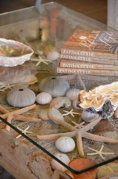 Enjoying your beach memories displayed in a glass storage table, memorable vignette for the home. #thingsmatter