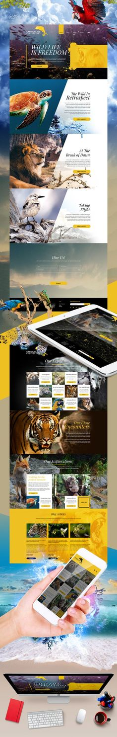 Camouflage Photography Website - Expolore the best and the special ideas about User experience Web Banner Design, Banners Web, Webdesign Inspiration, Website Design Inspiration, Graphic Design Inspiration, Typography Inspiration, Graphisches Design, Email Design, Layout Design
