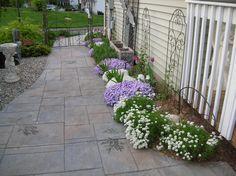 Jean's garden in Connecticut | Fine Gardening