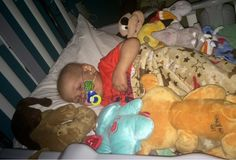 Dominic's journey with AML: Fly Kind Words, Toddler Bed, Journey, Child Bed, Nice Words, The Journey, Infant Bed