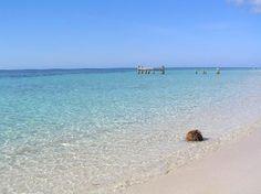 2nd stop on the cruise: Roatan, Honduras. Snorkeling here was amazing!