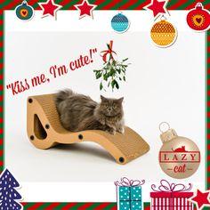 www.lazycatstore.com