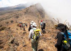 Kilimanjaro Climbing MACHAME ROUTE Africa safari