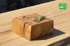 Cluster, Reclaimed Wood Table Top, Elm Tree, Conference Table, Deco