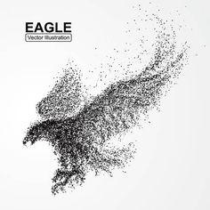 Image result for particle bird