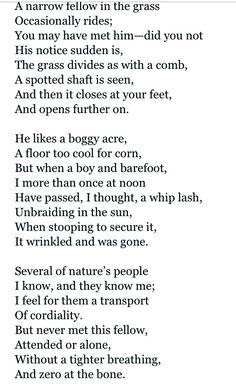a narrow fellow in the grass summary