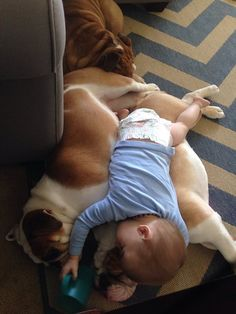 ❤ Just snuggling with the pack ❤ Posted on Baggy Bulldogs