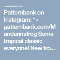 "Patternbank on Instagram: ""» patternbank.com/Mandarinafrog Some tropical classic everyone! New tropical pattern is available now on my Patternbank page. Extended…"""