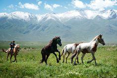 Markus Huth - Kirgisistan Schon als Kinder lernen die Kirgisen reiten und wie die Pferdezucht funktioniert.