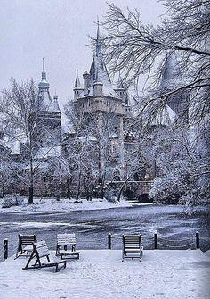 Castle of Vajdahunyad in Budapest, Hungary in winter