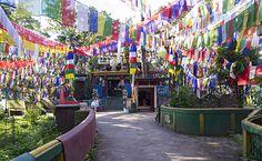 darjeeling tourism Tours and Travels, Darjeeling - West Bengal, India Darjeeling Tea, Dont Let Go, Hill Station, West Bengal, Incredible India, Trip Advisor, Temple, Tourism, Asia