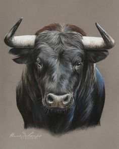 """El Toro"" Source by olgamahl Bull Tattoos, Taurus Tattoos, Ox Tattoo, Animal Paintings, Animal Drawings, Art Drawings, Bull Pictures, Taurus Art, Bull Painting"