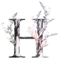 H927 (52) Alphabet Design, Alphabet Art, Letter Art, Monogram Wallpaper, Alphabet Wallpaper, Flower Letters, Flower Frame, Flower Backgrounds, Wallpaper Backgrounds