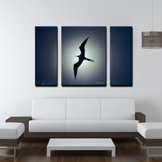 Ready2hangart Chris Doherty 'Frigatebird' 3-piece Wall Art