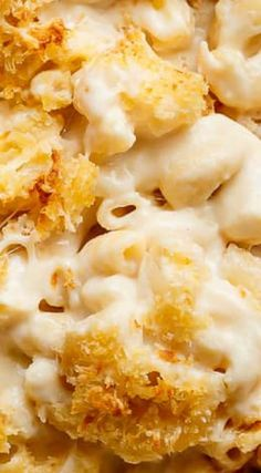 Garlic Parmesan Mac And Cheese ~ Better than the original. A creamy garlic parmesan cheese sauce coats your macaroni, topped with parmesan fried bread crumbs, while saving some calories! Mac Cheese Recipes, Macaroni N Cheese Recipe, Macaroni And Cheese, Side Dish Recipes, Dinner Recipes, Side Dishes, Dinner Ideas, Main Dishes, Real Food Recipes