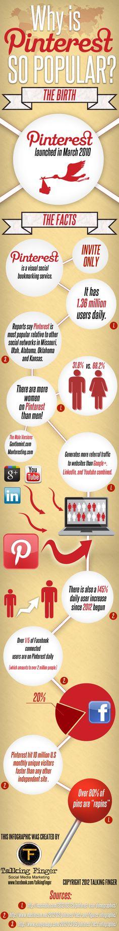 Hoe populair is Pinterest eigenlijk? Zie het hieronder! Een groeiend medium met veel mogelijkheden.