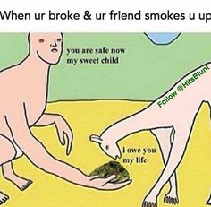 Stoner buddy saves your life Funny Weed Memes, Weed Jokes, 420 Memes, Weed Humor, Funny Relatable Memes, Funny Quotes, Funny Shit, Hilarious, Stoner Humor