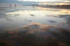 Jureia - Brasil, SP, Peruibe-  by Dani Sosco دانيّل سوسكو, via Flickr