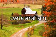 Own a small farm.  Chickens and ducks,rabbits, goats or sheep, dairy cow  Two horses and a dog.