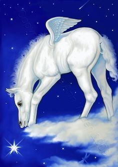 pegasus pictures to print | ACEO Fantasy Pegasus Horse Art Print Catch A by…