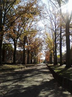 Nothing more beautiful than Ohio University   In the fall