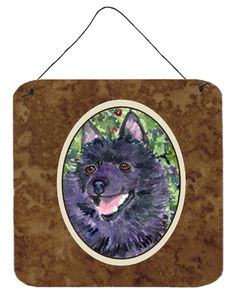 Schipperke Aluminium Metal Wall or Door Hanging Prints