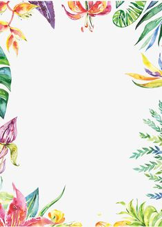 Hand painted colorful plant borders PNG and Clipart Watercolor Border, Watercolor Flowers, Flower Backgrounds, Flower Wallpaper, Flower Frame, Flower Art, Poster Decorations, Pop Posters, Vegetable Prints
