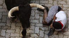 Un mozo permanece en el suelo al paso de uno de los toros de la ganadería de Jandilla en la entrada al coso pamplonica, durante el quinto encierro de los sanfermines 2014. (EFE)