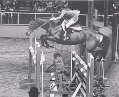 Pushover owned by Mrs. Miles Valetine & shown by Carol Hoffman Thompson- at The National Horse Show in 1971