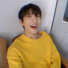 Joshua Meme, Joshua Hong, Jeonghan, Woozi, Wonwoo, Joshua Seventeen, Hong Jisoo, Fandom, Pledis Entertainment