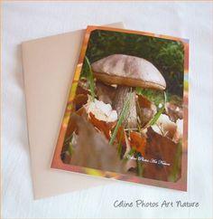 Carte champignon de Céline Photos Art Nature