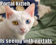 Lololol... #portal