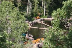 Strawberry Hot Springs, Steamboat Springs, CO