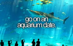 ✔️ go on an aquarium date