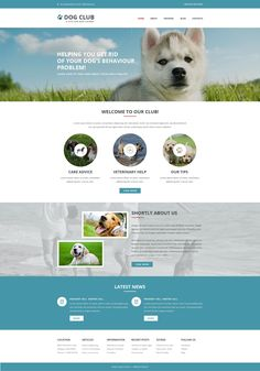 Website Theme , Website template