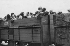 Even in the dead of winter, Jews were packed into open cattle cars for transport to the Extermination Camp of Chelmno.