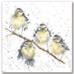 Wrendale Desings linnut kortti