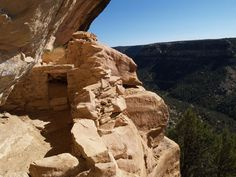On the ladder up to Balcony House, 750 feet above the canyon- straight up.